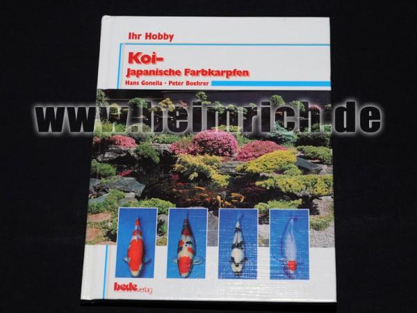 KOI - japanische Farbkarpfen