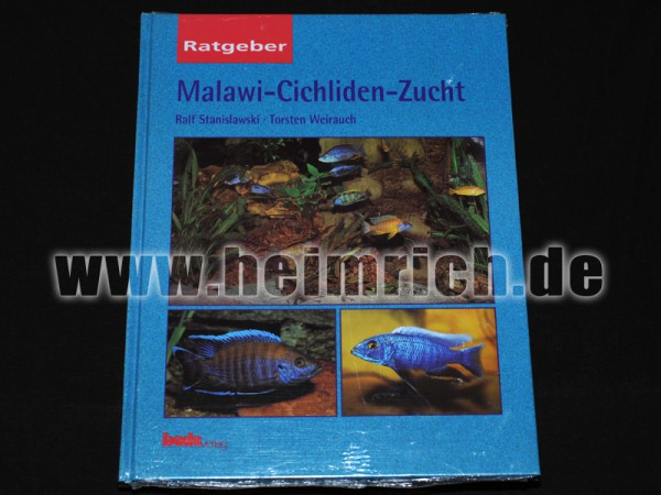 Malawi-Cichliden-Zucht