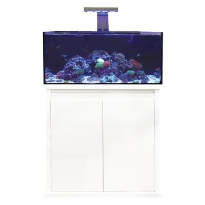 D-D Reef-Pro 900 White
